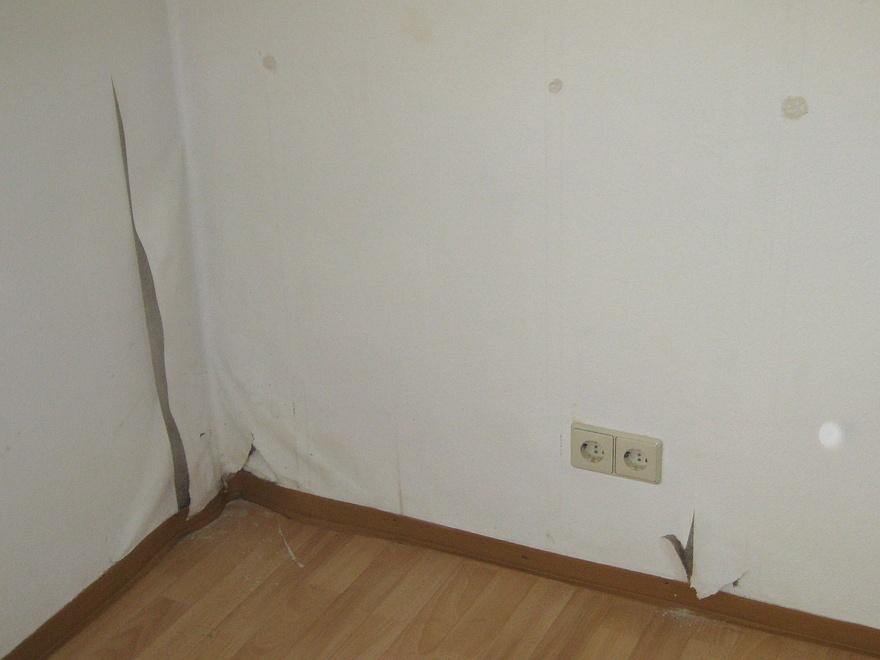schimmel entfernen tapete schimmel entfernen tapete. Black Bedroom Furniture Sets. Home Design Ideas
